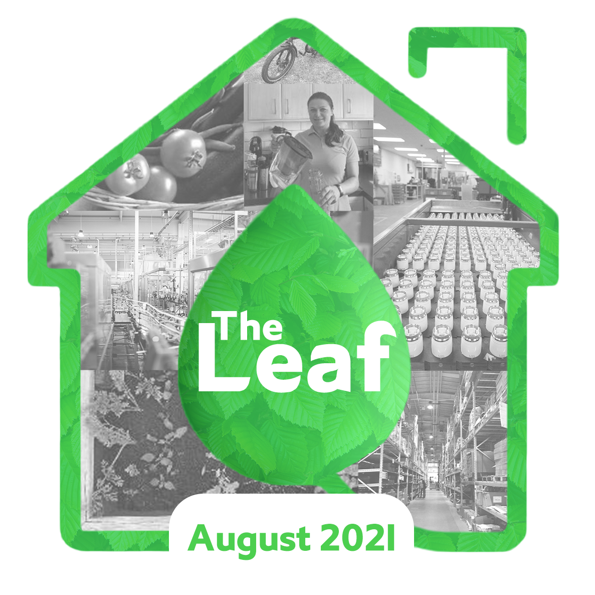 The Leaf Sustainability Blog by Drayton - August 2021